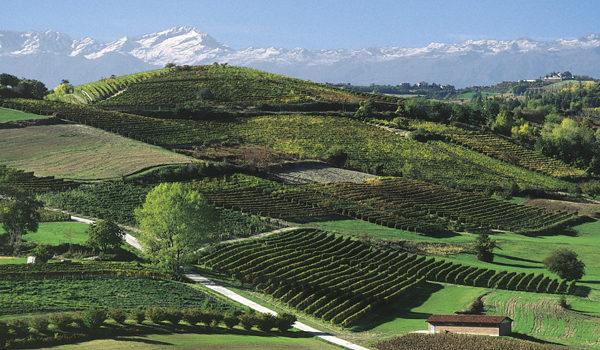 itinerari vino 03 small